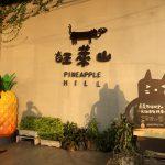 民雄郷 旺萊山鳳梨文化園區 台湾で人気パイナップルケーキ本店へ潜入!PineApple Hill